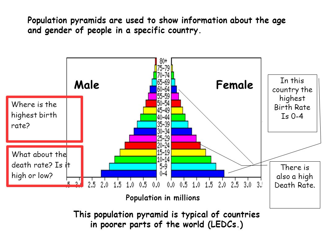 population pyramid essay questions Population pyramids: keywords: population pyramid: a graph showing the % of males and females of different age groups in a country economically active: people who.