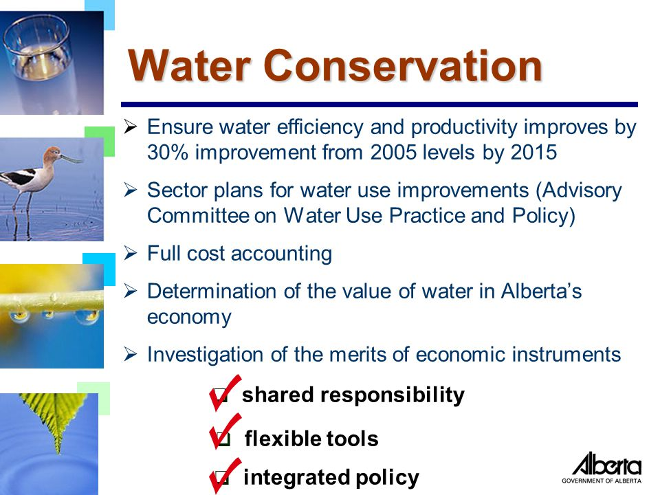 Water Conservation  Ensure water efficiency and productivity improves by 30% improvement from 2005 levels by 2015  Sector plans for water use improvements (Advisory Committee on Water Use Practice and Policy)  Full cost accounting  Determination of the value of water in Alberta's economy  Investigation of the merits of economic instruments  shared responsibility  flexible tools  integrated policy