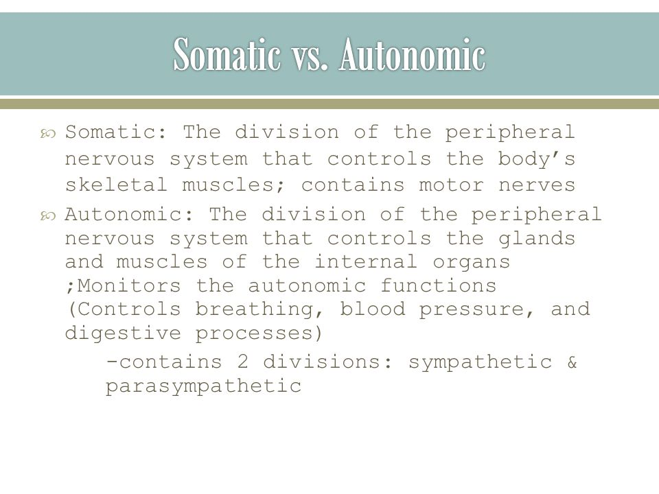  Somatic: The division of the peripheral nervous system that controls the body's skeletal muscles; contains motor nerves  Autonomic: The division of the peripheral nervous system that controls the glands and muscles of the internal organs ;Monitors the autonomic functions (Controls breathing, blood pressure, and digestive processes) -contains 2 divisions: sympathetic & parasympathetic