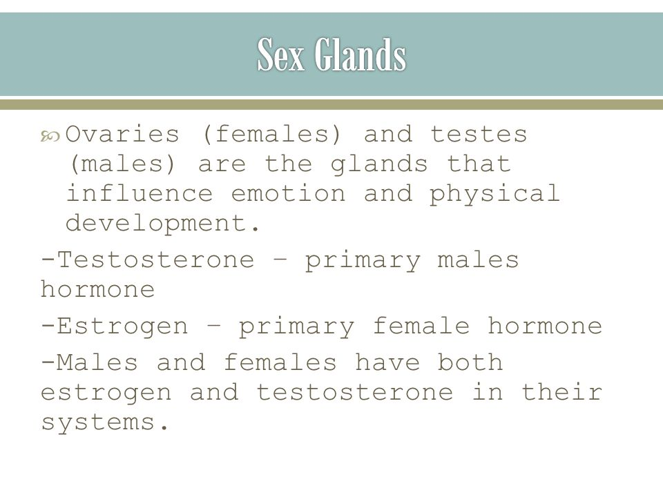  Ovaries (females) and testes (males) are the glands that influence emotion and physical development.