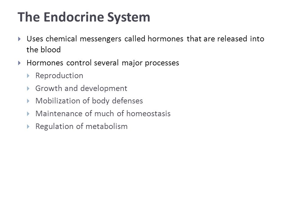 The Endocrine System  Uses chemical messengers called hormones that are released into the blood  Hormones control several major processes  Reproduction  Growth and development  Mobilization of body defenses  Maintenance of much of homeostasis  Regulation of metabolism