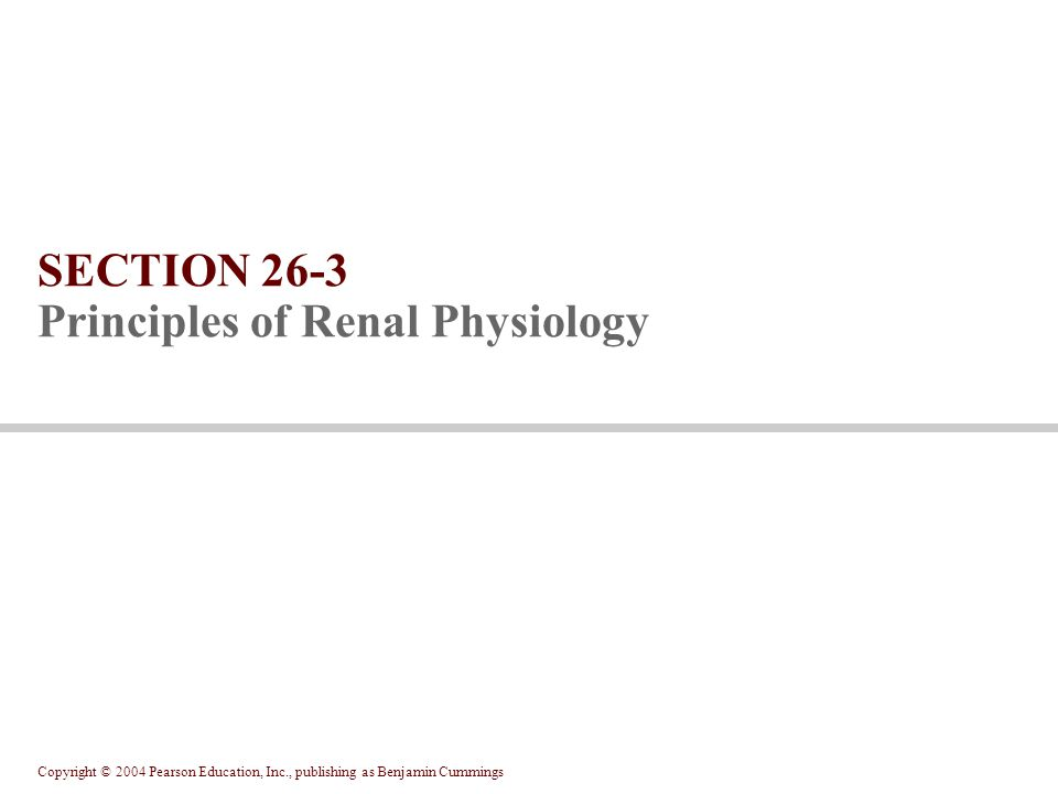 Copyright © 2004 Pearson Education, Inc., publishing as Benjamin Cummings SECTION 26-3 Principles of Renal Physiology