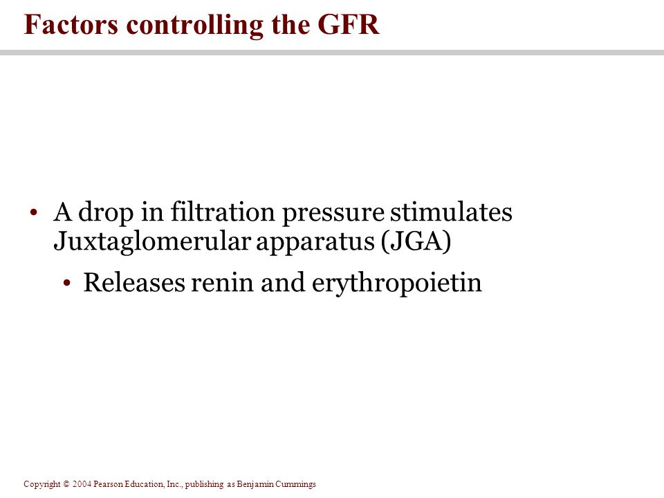 Copyright © 2004 Pearson Education, Inc., publishing as Benjamin Cummings A drop in filtration pressure stimulates Juxtaglomerular apparatus (JGA) Releases renin and erythropoietin Factors controlling the GFR