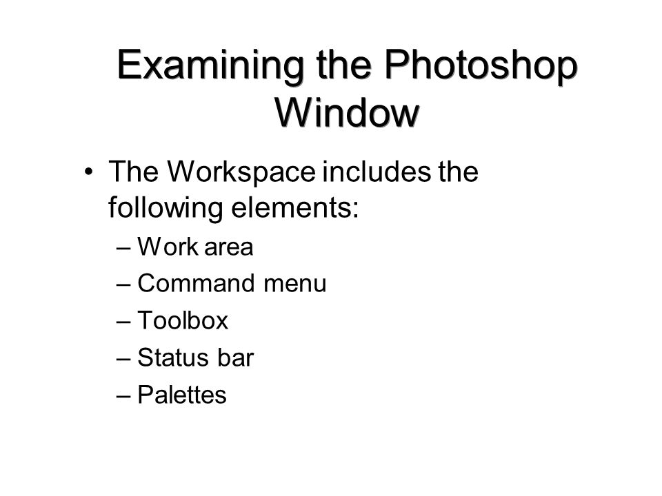 Examining the Photoshop Window The Workspace includes the following elements: –Work area –Command menu –Toolbox –Status bar –Palettes
