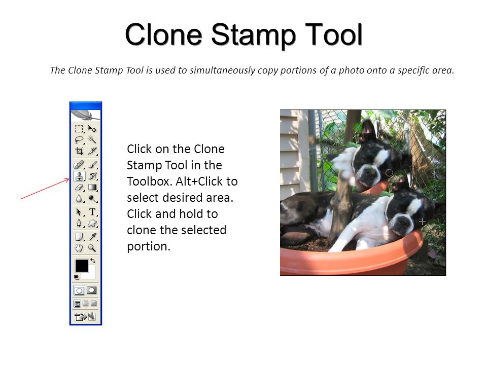 Clone Stamp Tool The Clone Stamp Tool is used to simultaneously copy portions of a photo onto a specific area.