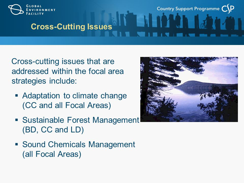 Cross-Cutting Issues Cross-cutting issues that are addressed within the focal area strategies include:  Adaptation to climate change (CC and all Focal Areas)  Sustainable Forest Management (BD, CC and LD)  Sound Chemicals Management (all Focal Areas)