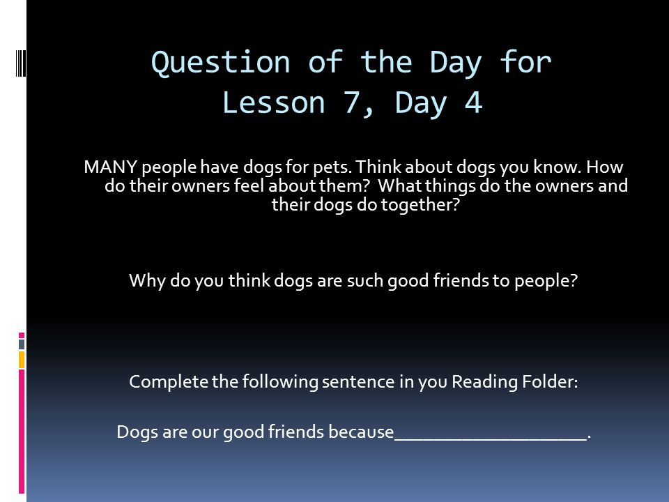 Question of the Day for Lesson 7, Day 4 MANY people have dogs for pets.