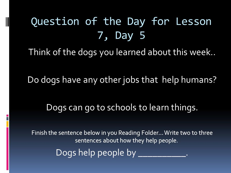 Question of the Day for Lesson 7, Day 5 Think of the dogs you learned about this week..