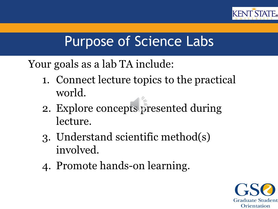 Duties of a Science Lab TA Varies from department to department.