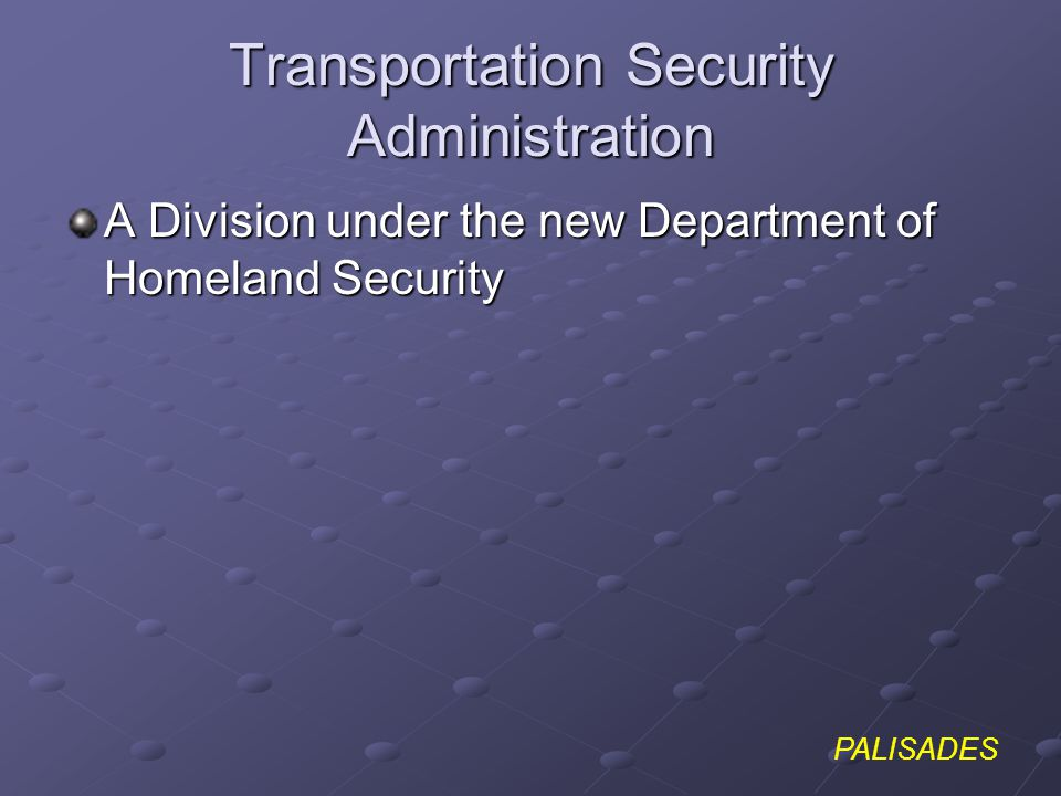 PALISADES Transportation Security Administration A Division under the new Department of Homeland Security