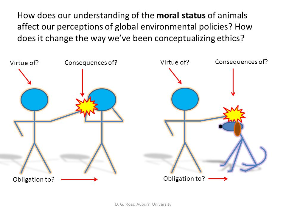 understanding environmental ethics Environmental ethics filed under: term papers tagged with: philosophy understanding the magnitude of the environmental crisis and the potential threat it poses to life on this planet, it is.