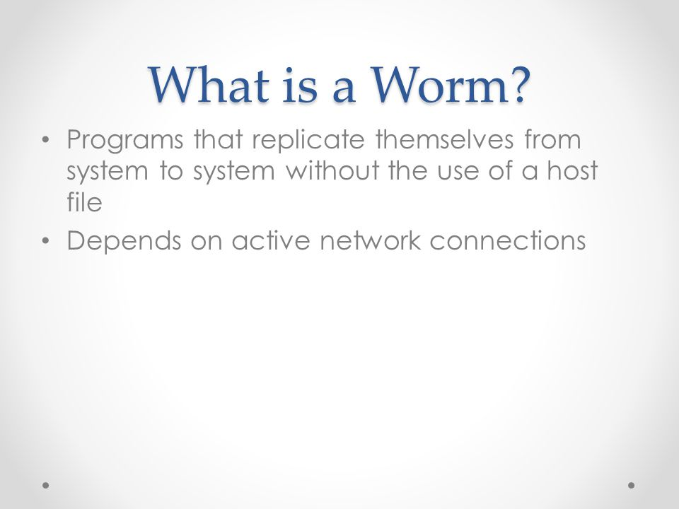 What is a Worm.