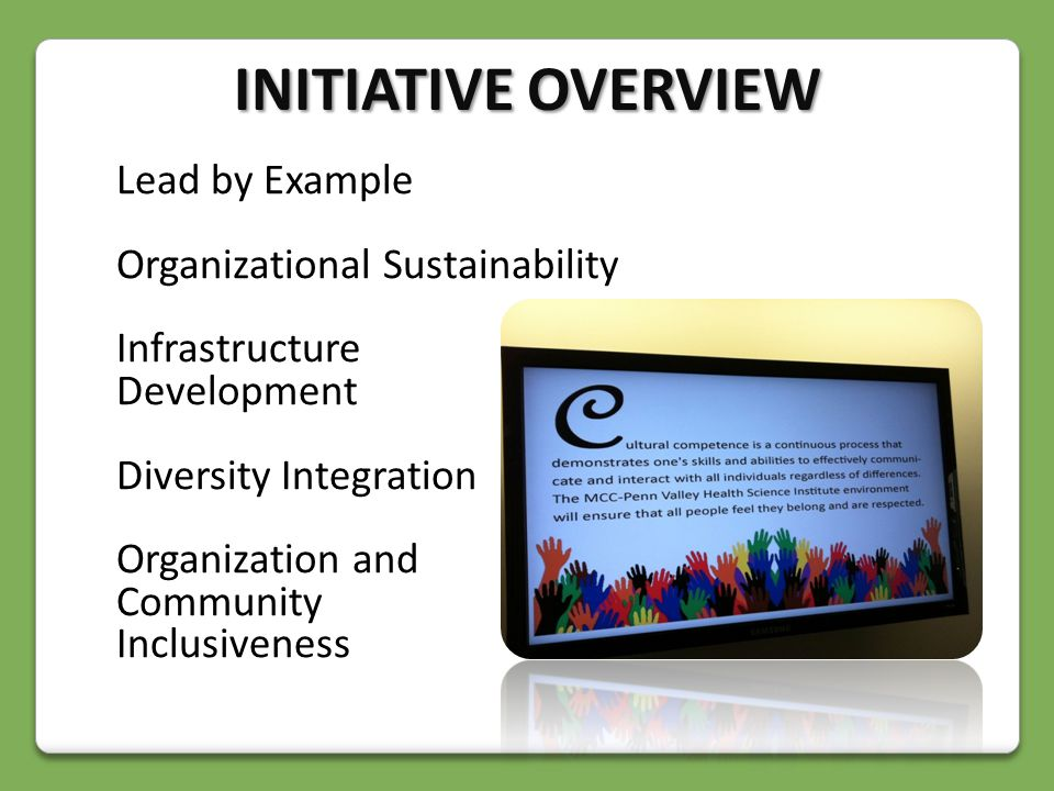 Lead by Example Organizational Sustainability Infrastructure Development Diversity Integration Organization and Community Inclusiveness INITIATIVE OVERVIEW