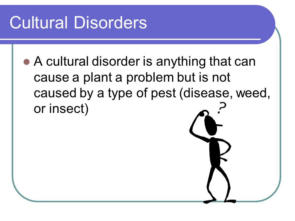 Cultural Disorders A cultural disorder is anything that can cause a plant a problem but is not caused by a type of pest (disease, weed, or insect)