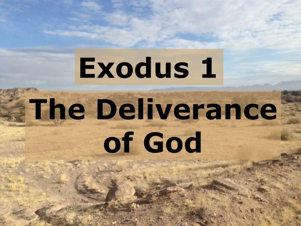 exodus 2 accounts