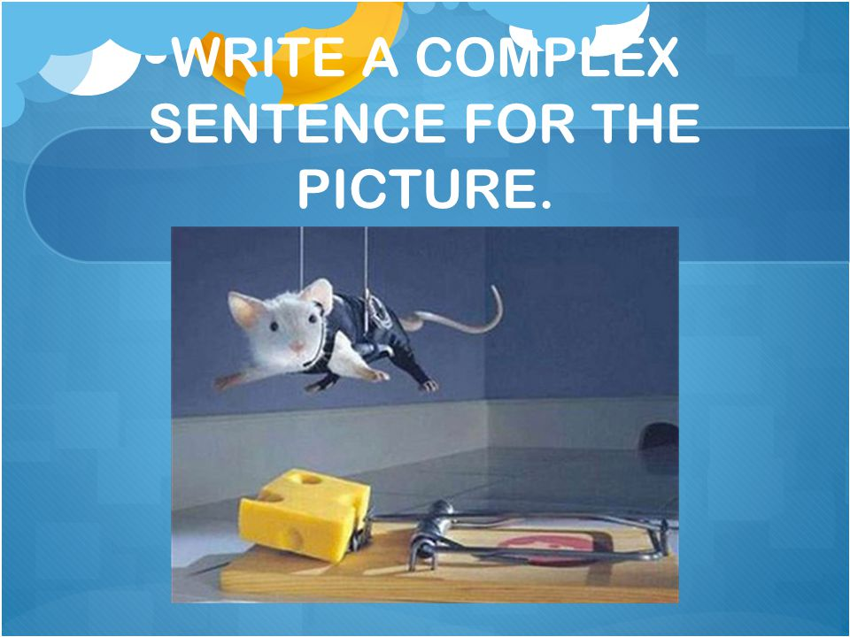 WRITE A COMPLEX SENTENCE FOR THE PICTURE.
