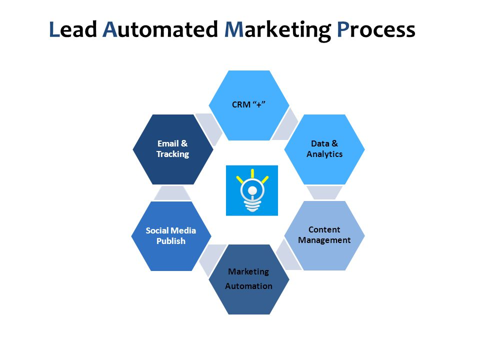 Lead Automated Marketing Process