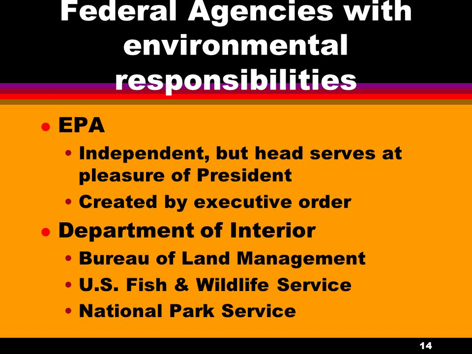 14 Federal Agencies with environmental responsibilities l EPA Independent, but head serves at pleasure of President Created by executive order l Department of Interior Bureau of Land Management U.S.