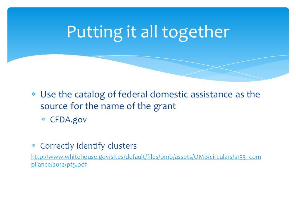  Use the catalog of federal domestic assistance as the source for the name of the grant  CFDA.gov  Correctly identify clusters   pliance/2012/pt5.pdf Putting it all together