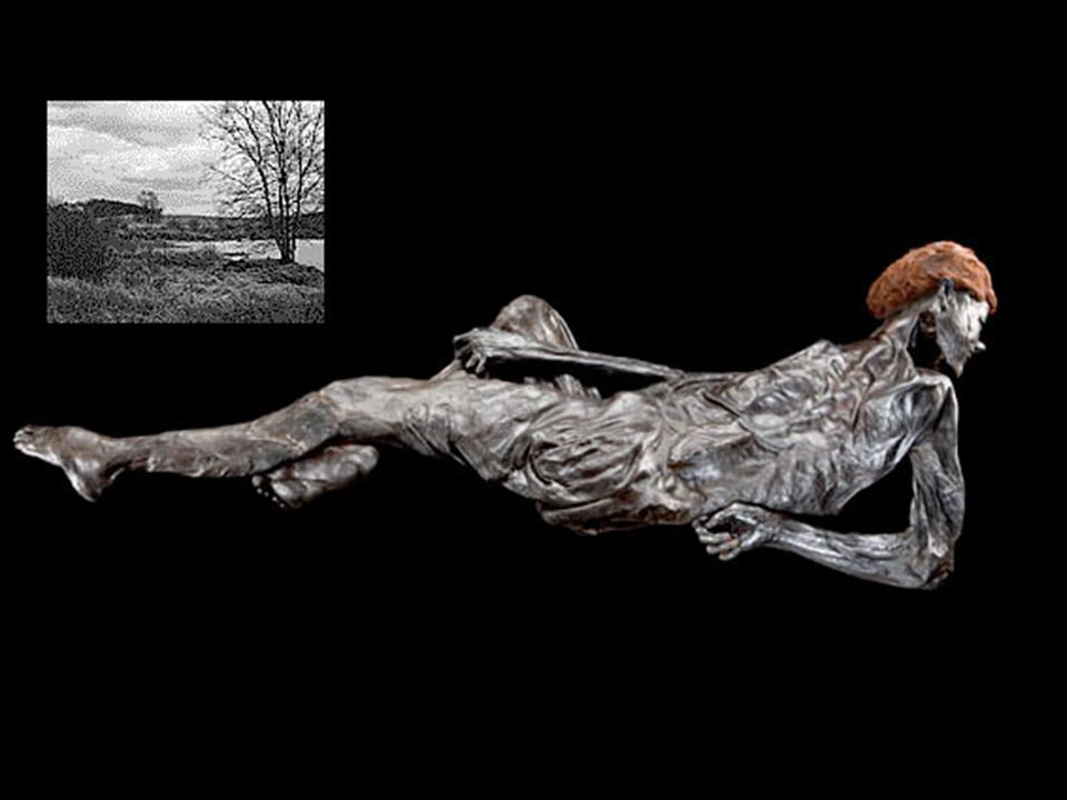 the bog bodies and what they tell The individual bog bodies show a great degree of variation in their state of preservation, from skeletons, to well-preserved complete bodies, to isolated heads and limbs they range in date from 8000 bc to the early medieval period.