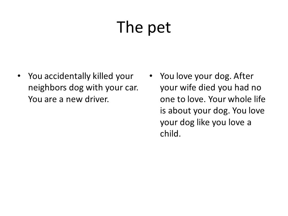 The pet You accidentally killed your neighbors dog with your car.