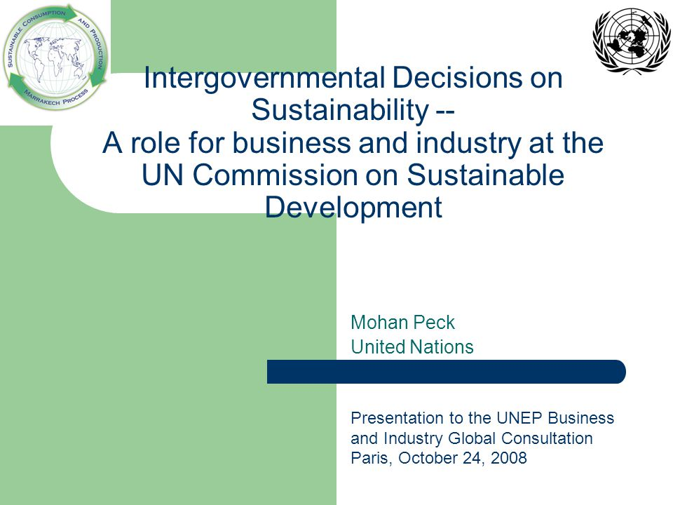Intergovernmental Decisions on Sustainability -- A role for business and industry at the UN Commission on Sustainable Development Mohan Peck United Nations Presentation to the UNEP Business and Industry Global Consultation Paris, October 24, 2008