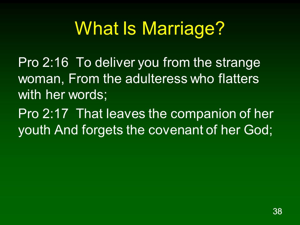 38 What Is Marriage.