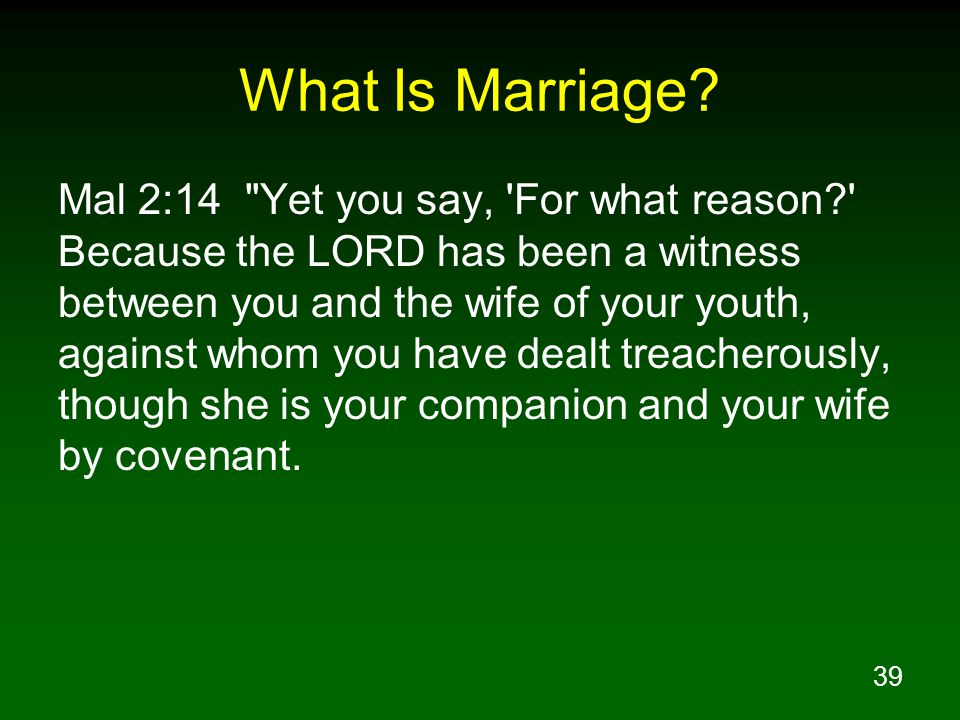 39 What Is Marriage.