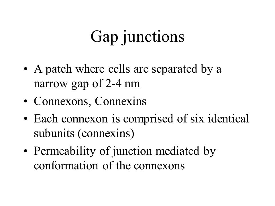 Gap junctions A patch where cells are separated by a narrow gap of 2-4 nm Connexons, Connexins Each connexon is comprised of six identical subunits (connexins) Permeability of junction mediated by conformation of the connexons