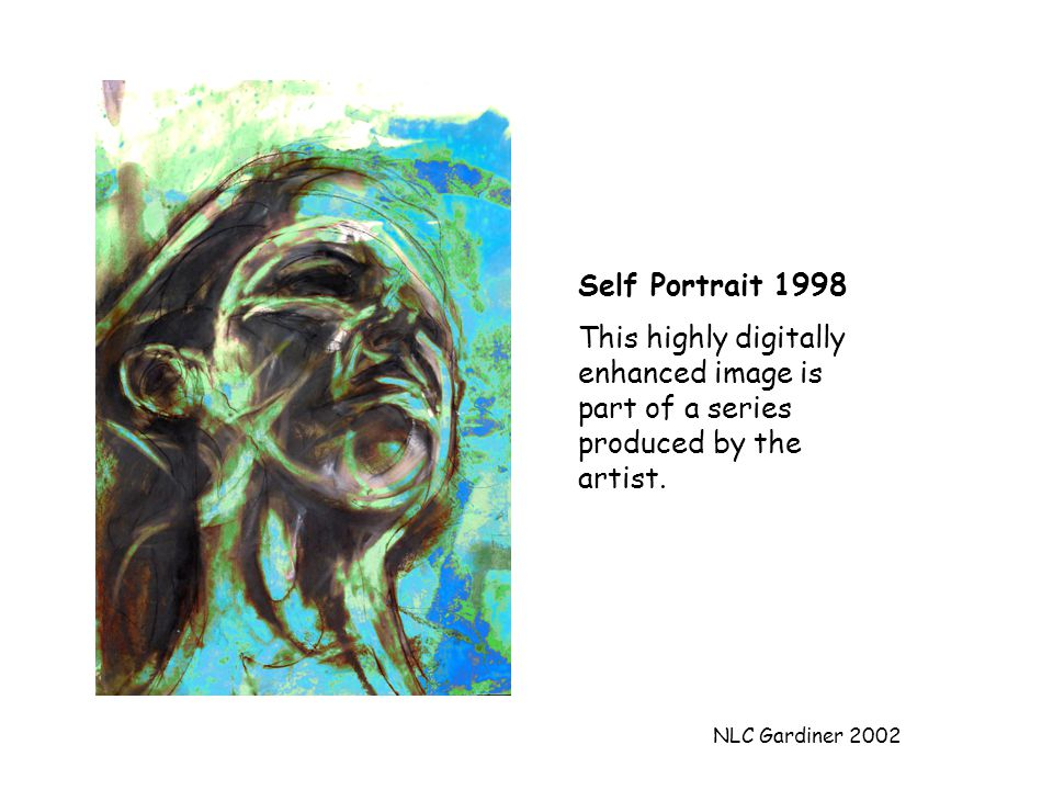 NLC Gardiner 2002 Self Portrait 1998 This highly digitally enhanced image is part of a series produced by the artist.