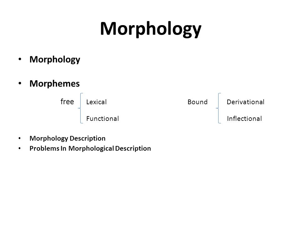 Morphology Morphemes free Lexical Bound Derivational Functional Inflectional Morphology Description Problems In Morphological Description