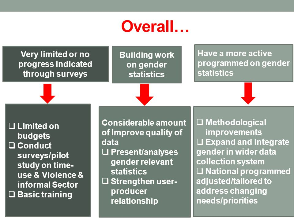 Overall… Have a more active programmed on gender statistics  Methodological improvements  Expand and integrate gender in wider data collection system  National programmed adjusted/tailored to address changing needs/priorities Considerable amount of Improve quality of data  Present/analyses gender relevant statistics  Strengthen user- producer relationship Building work on gender statistics Very limited or no progress indicated through surveys  Limited on budgets  Conduct surveys/pilot study on time- use & Violence & informal Sector  Basic training