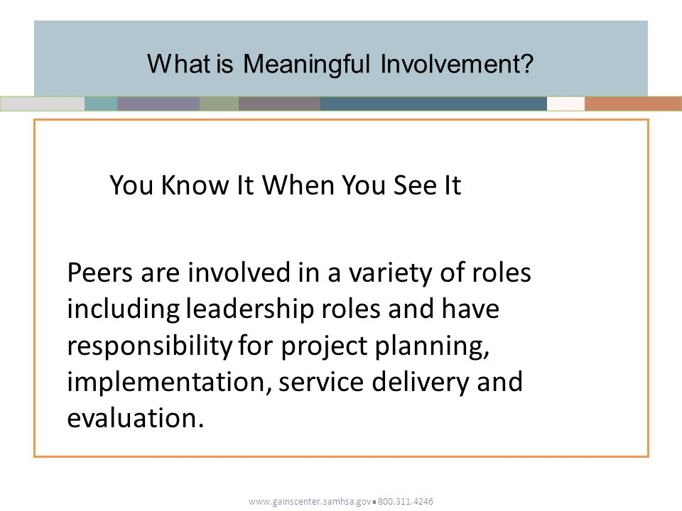 What is Meaningful Involvement.