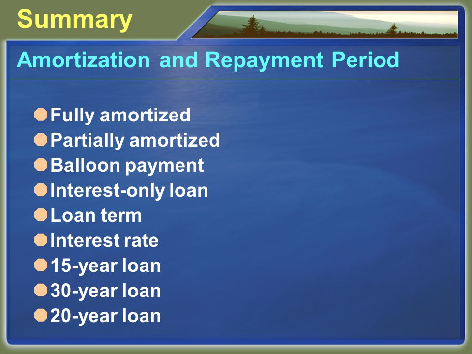 Summary Amortization and Repayment Period  Fully amortized  Partially amortized  Balloon payment  Interest-only loan  Loan term  Interest rate  15-year loan  30-year loan  20-year loan