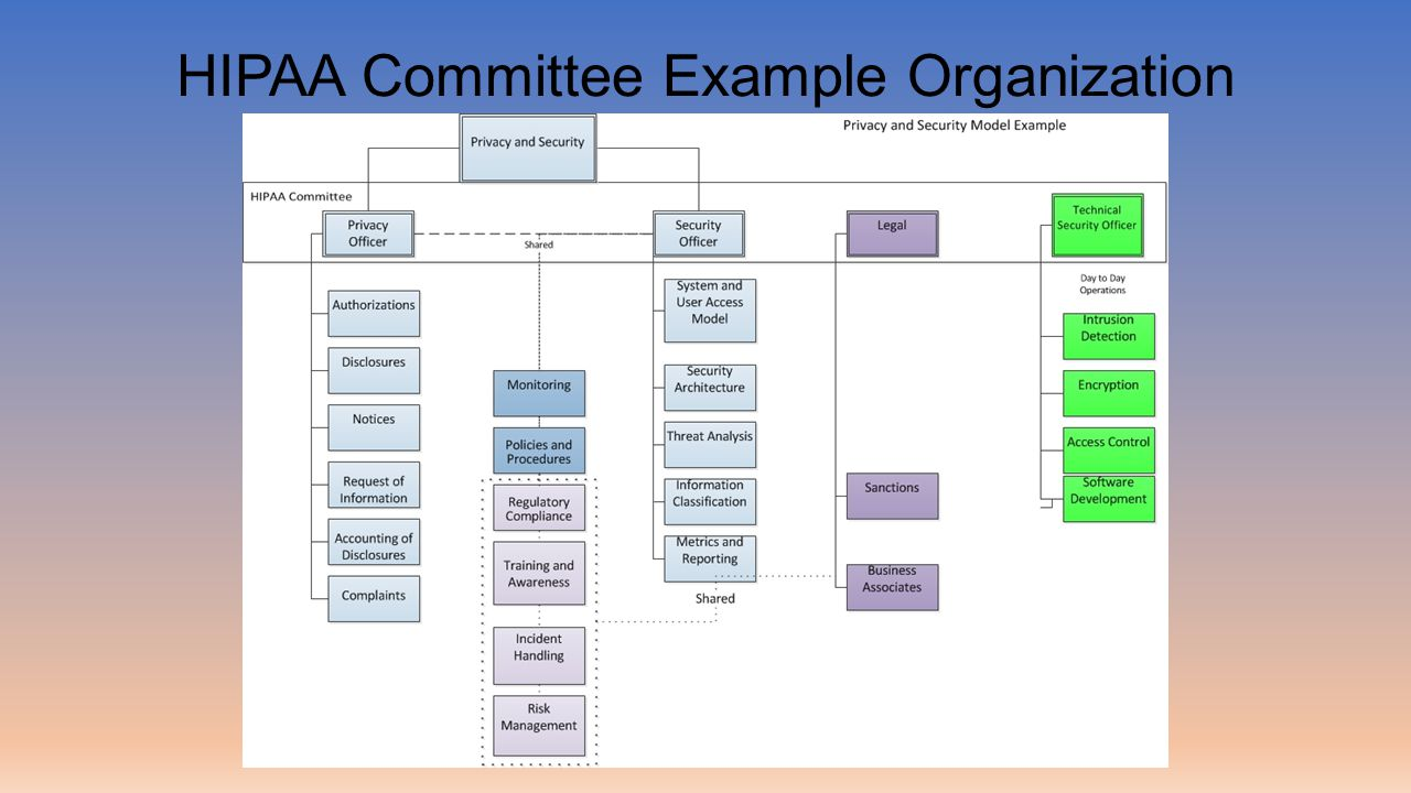 HIPAA Committee Example Organization