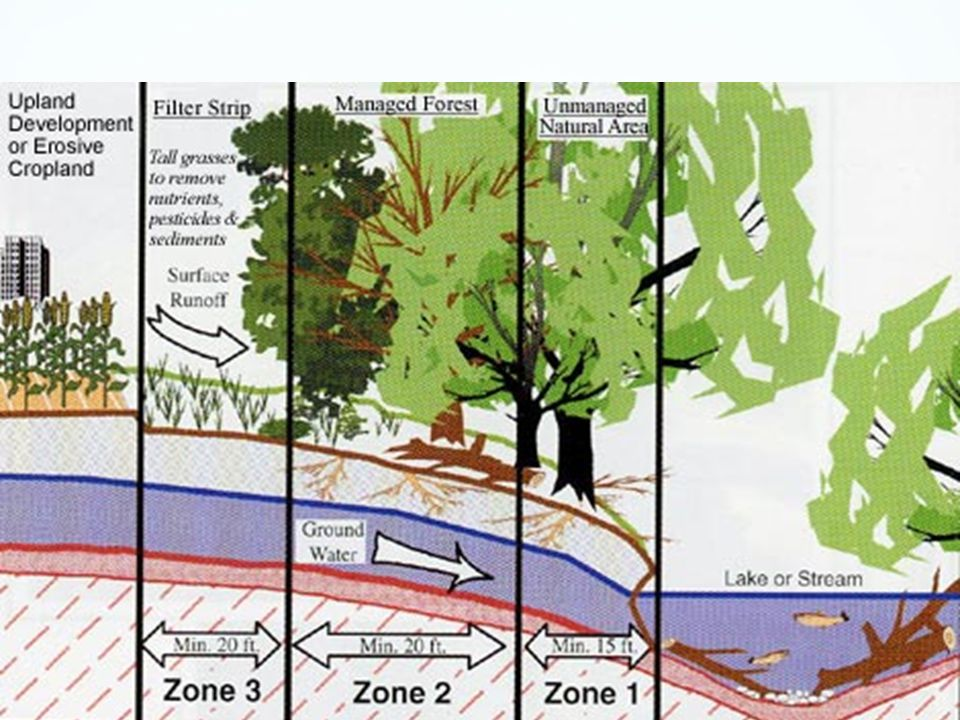 Weathering Erosion Deposition Ppt Video Online Download