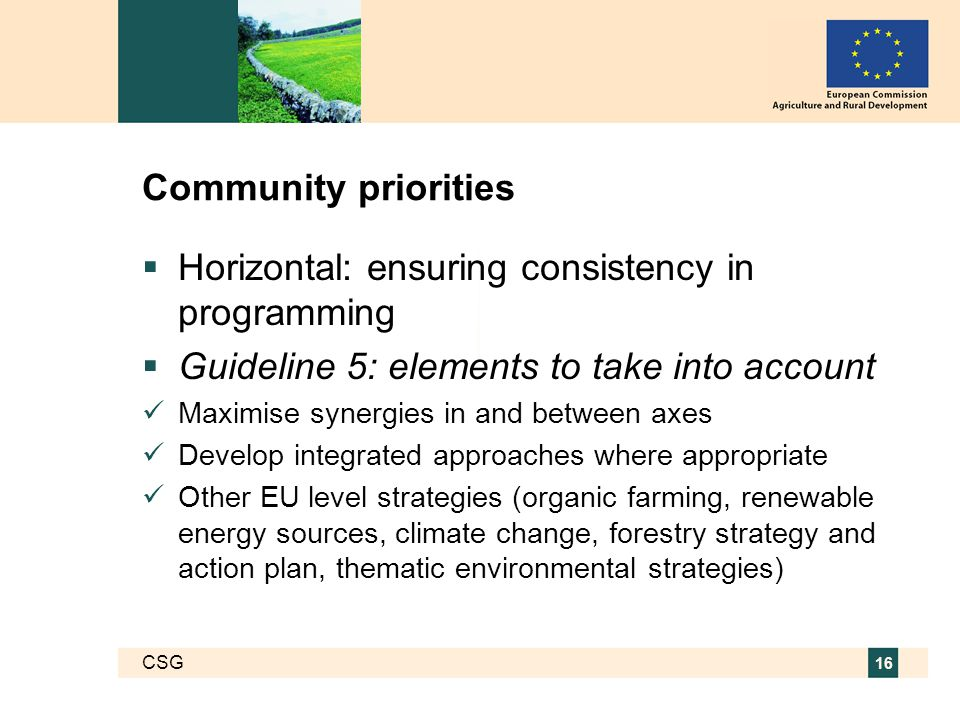 CSG 16 Community priorities  Horizontal: ensuring consistency in programming  Guideline 5: elements to take into account Maximise synergies in and between axes Develop integrated approaches where appropriate Other EU level strategies (organic farming, renewable energy sources, climate change, forestry strategy and action plan, thematic environmental strategies)
