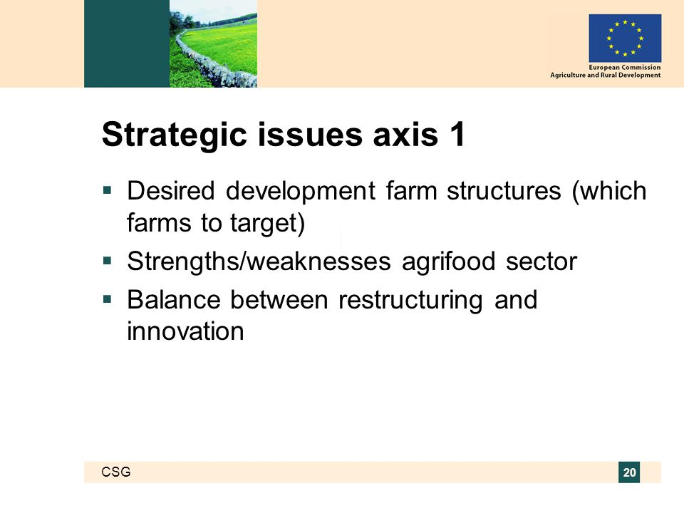 CSG 20 Strategic issues axis 1  Desired development farm structures (which farms to target)  Strengths/weaknesses agrifood sector  Balance between restructuring and innovation