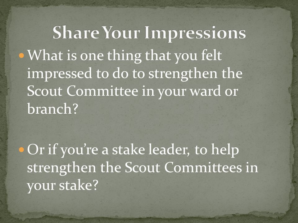What is one thing that you felt impressed to do to strengthen the Scout Committee in your ward or branch.