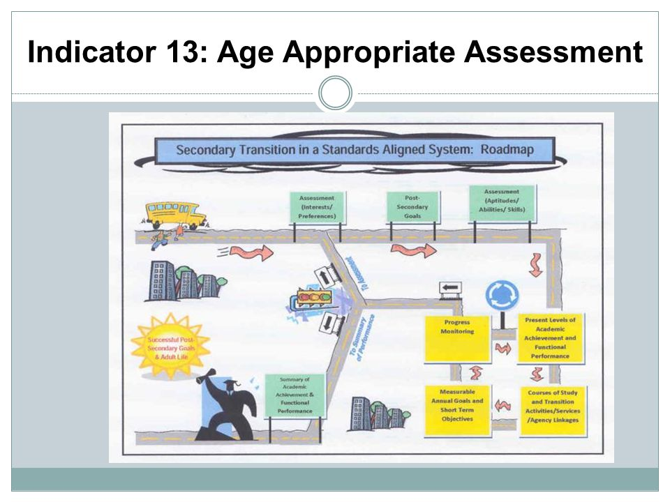 Indicator 13: Age Appropriate Assessment