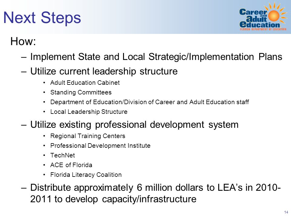 14 Next Steps How: –Implement State and Local Strategic/Implementation Plans –Utilize current leadership structure Adult Education Cabinet Standing Committees Department of Education/Division of Career and Adult Education staff Local Leadership Structure –Utilize existing professional development system Regional Training Centers Professional Development Institute TechNet ACE of Florida Florida Literacy Coalition –Distribute approximately 6 million dollars to LEA's in to develop capacity/infrastructure