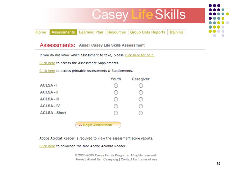 graphic about Ansell Casey Life Skills Assessment Printable named Changeover Examination for Pupils with Really serious Various