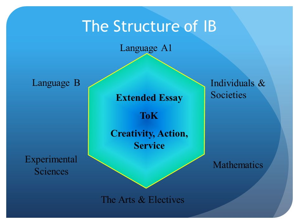 The Structure of IB Language A1 Language B Individuals & Societies Mathematics Experimental Sciences The Arts & Electives Extended Essay ToK Creativity, Action, Service