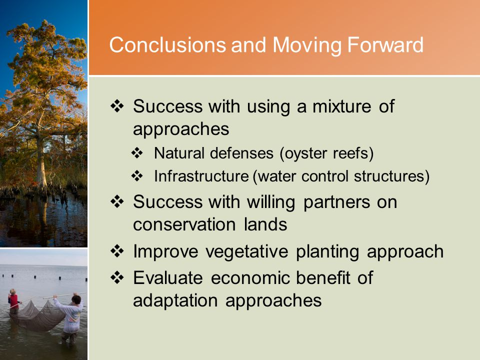 Conclusions and Moving Forward  Success with using a mixture of approaches  Natural defenses (oyster reefs)  Infrastructure (water control structures)  Success with willing partners on conservation lands  Improve vegetative planting approach  Evaluate economic benefit of adaptation approaches