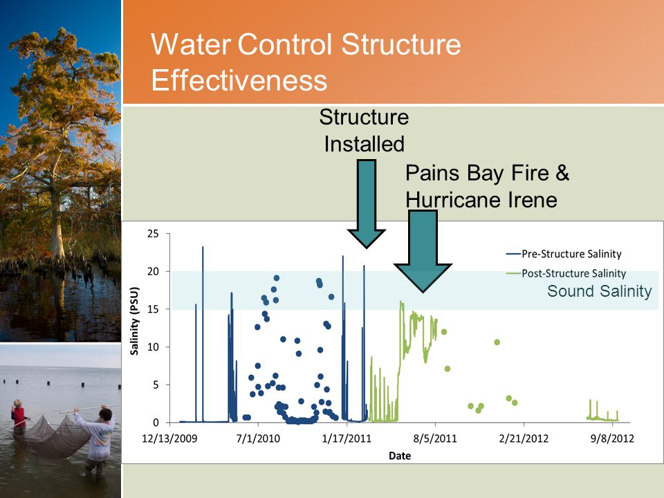 Water Control Structure Effectiveness Structure Installed Pains Bay Fire & Hurricane Irene Sound Salinity