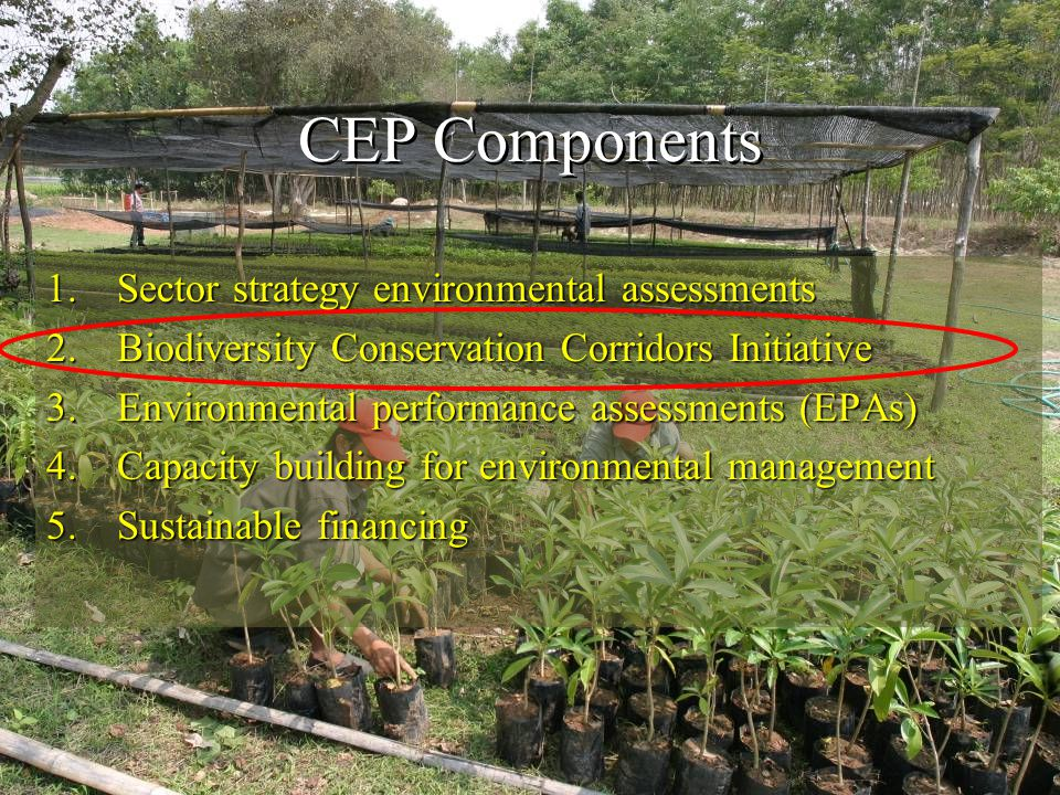 CEP Components 1.Sector strategy environmental assessments 2.Biodiversity Conservation Corridors Initiative 3.Environmental performance assessments (EPAs) 4.Capacity building for environmental management 5.Sustainable financing