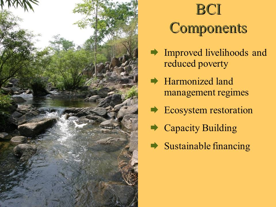 BCI Components  Improved livelihoods and reduced poverty  Harmonized land management regimes  Ecosystem restoration  Capacity Building  Sustainable financing