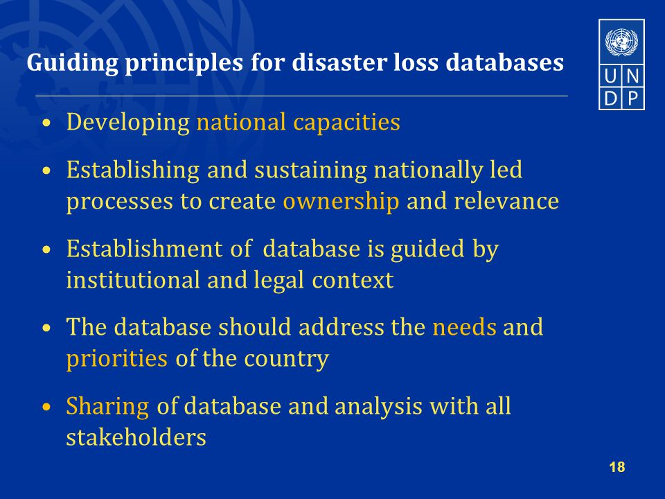 Guiding principles for disaster loss databases Developing national capacities Establishing and sustaining nationally led processes to create ownership and relevance Establishment of database is guided by institutional and legal context The database should address the needs and priorities of the country Sharing of database and analysis with all stakeholders 18
