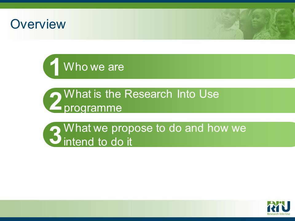 Overview Who we are 1 What is the Research Into Use programme 2 What we propose to do and how we intend to do it 3