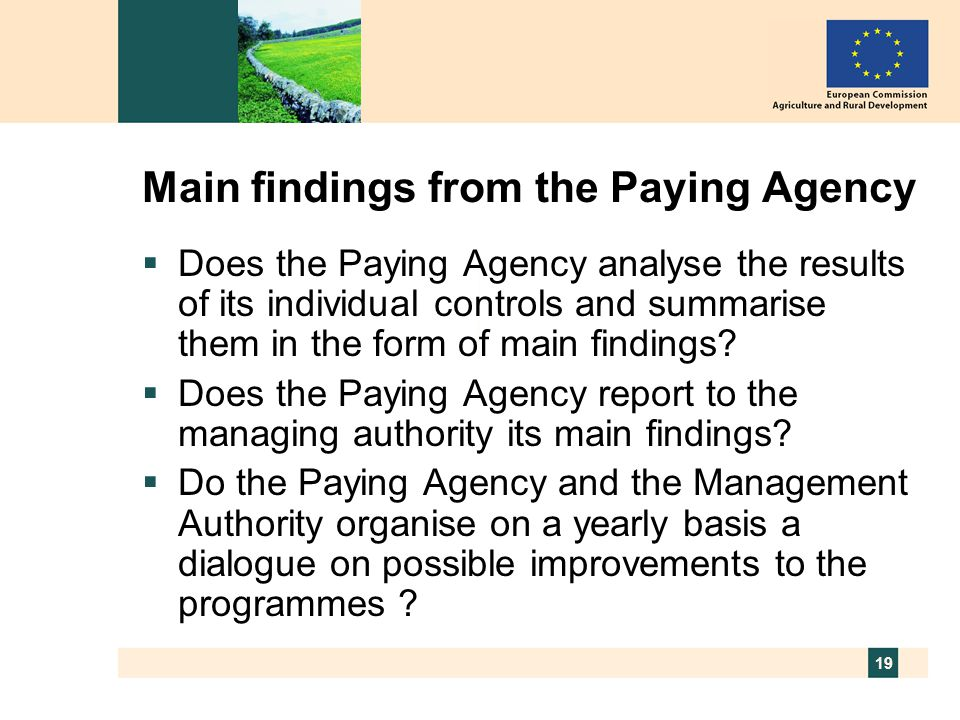 19 Main findings from the Paying Agency  Does the Paying Agency analyse the results of its individual controls and summarise them in the form of main findings.